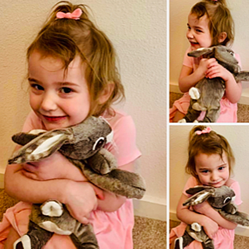 Collage of Layla and stuffed animal